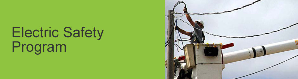 Electric Safety Program